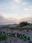 Sunrise on the beach at Little Talbot Island State Park